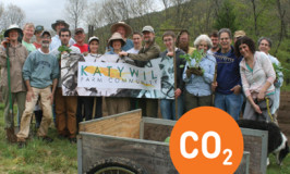 Katywil connects a dot on worldwide Climate Action Day