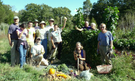 harvest work party at Katywil's community garden
