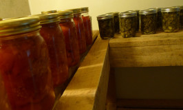 pickles in Katywil root cellar