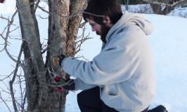 Fruit tree grafting workshop at Katywil Farm Community May 3
