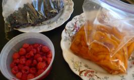fruit from Katywil Farm Community gardens