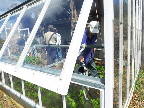 A Greenhouse Work Party at Stowe Farm Community