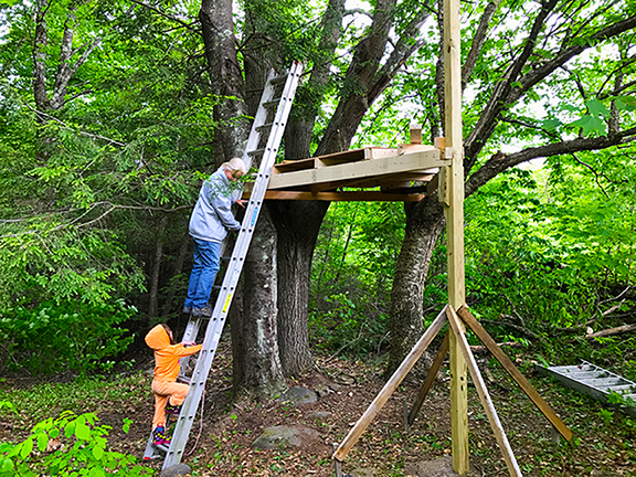 Emma and Lucy checking out the community tree house at Stowe Farm.