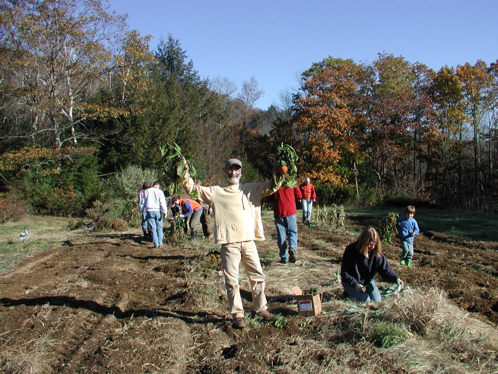 Charles hits the jackpot, gleaning the garden at Stowe Farm Community