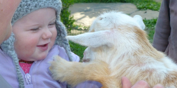 Maggie and Goat Charlotte meet at Stowe Farm Community