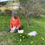 weeding w geese