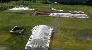 Stowe Farm butterfly garden, covering