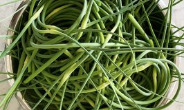 garlic scapes at Stowe Farm