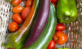 Stowe Farm produce