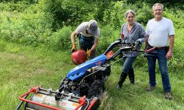 BCS training at Stowe Farm Community